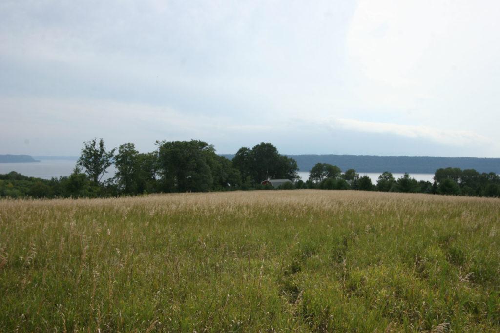 maidenrock (4)