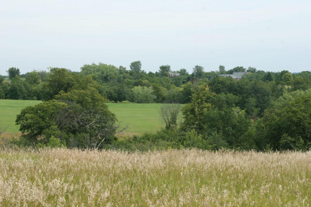 maidenrock (5)