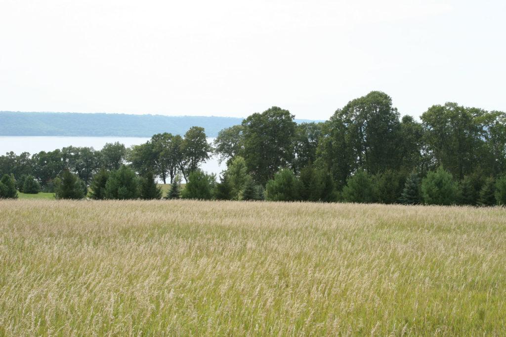 maidenrock (6)
